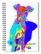 Hermana Muy Curiosa Spiral Notebook