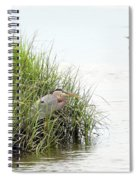 Heron And Cormorant Spiral Notebook