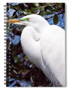 Heron Deep Contemplation Spiral Notebook