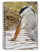 Heron Harpoon Spiral Notebook