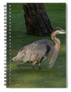 Heron In Dark Pond Spiral Notebook