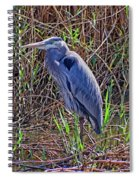 Heron In Marshes Spiral Notebook