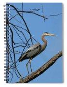 Heron In Tree  4998 Spiral Notebook