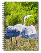 Heron On The Rise Spiral Notebook