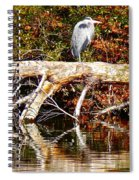 Heron Perch Spiral Notebook