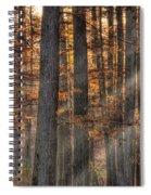 Heron Pond Morning Mist Spiral Notebook