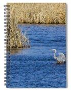 Heron Preening Spiral Notebook