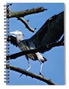 Heron Spreads Wings Spiral Notebook