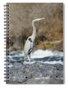 Heron The Rock Spiral Notebook