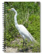Heron Watching Spiral Notebook