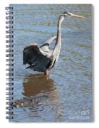 Heron With Gator Spiral Notebook