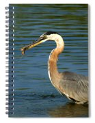 Herons Catch Spiral Notebook