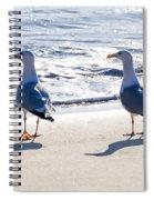 Herring Gulls On The Beach Spiral Notebook