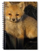 Here's Looking At You, Kit. Spiral Notebook