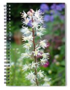 Heucharella - Fairy Bells Spiral Notebook