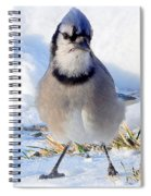 Hey Are You Talking To Me? Spiral Notebook