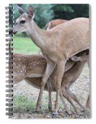 Hey, Can I Have Some? Spiral Notebook