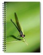 Hey You.. Spiral Notebook