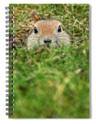 Hey...wha S'up Spiral Notebook