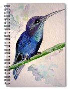 hHUMMINGBIRD 2   Spiral Notebook
