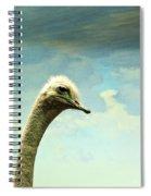 Hi, I Am The Ostrich Spiral Notebook