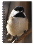 Hi Spiral Notebook