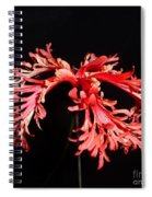 Hibiscus 1 Spiral Notebook