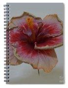 Hibiscus 3 Spiral Notebook