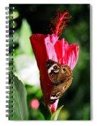 Hibiscus Aflutter Spiral Notebook