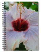 Hibiscus Beauty Spiral Notebook