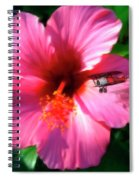 Hibiscus Fly-by Spiral Notebook