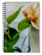 Hibiscus In Bloom Spiral Notebook
