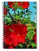 Hibiscus In Naptown Spiral Notebook