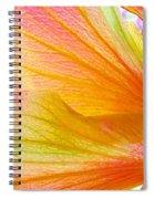 Hibiscus Petals Spiral Notebook