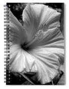Hibiscus With An Infrared Effect Spiral Notebook