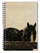 Hickory Spiral Notebook