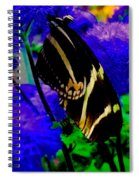 Winged Dream Spiral Notebook