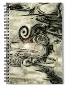 Hidden Dreams Spiral Notebook