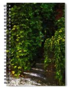 Hidden Hermitage Spiral Notebook