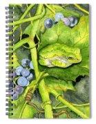 Hidden IIi Spiral Notebook