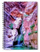 Hidden Oasis Spiral Notebook
