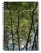Hidden Pond Natural Fence Spiral Notebook