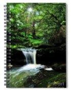 Hidden Rainforest - Painterly Spiral Notebook