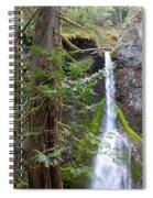 Hidden Rainforest Treasure Spiral Notebook