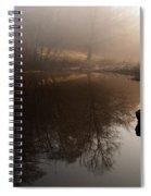 Hidden Reflections Spiral Notebook