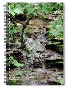 Hidden Stream Spiral Notebook