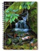 Hidden Treasures Spiral Notebook