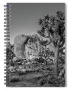 Hidden Valley Rock Spiral Notebook