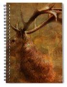 Hide And Seek 2015 Spiral Notebook