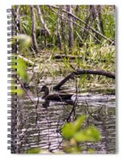 Hide And Seek Ducks Spiral Notebook